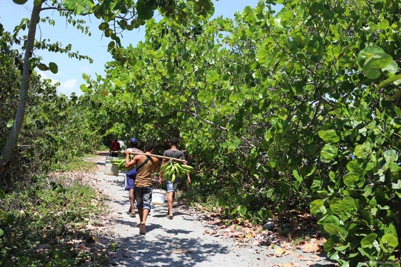 Playa Blancaへ至る道2