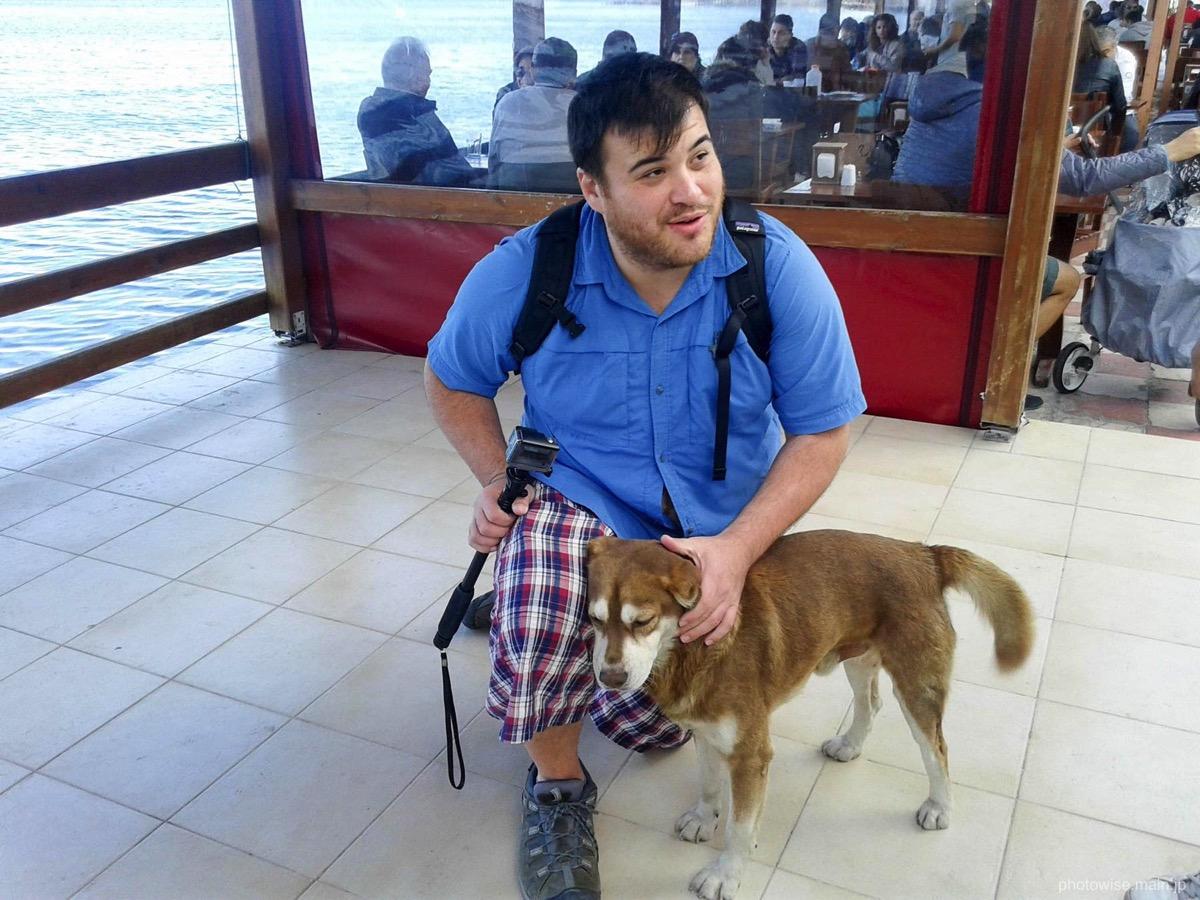 アレックスと犬