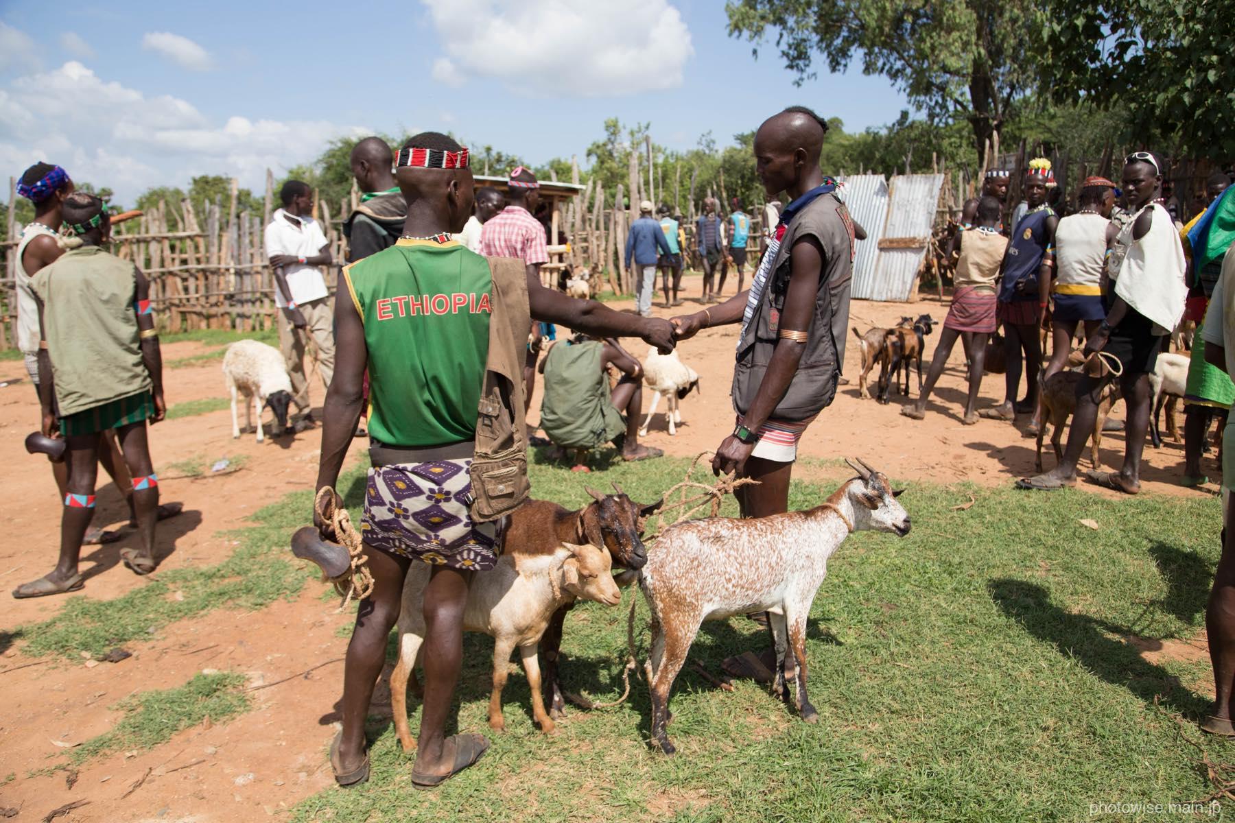 家畜の取引