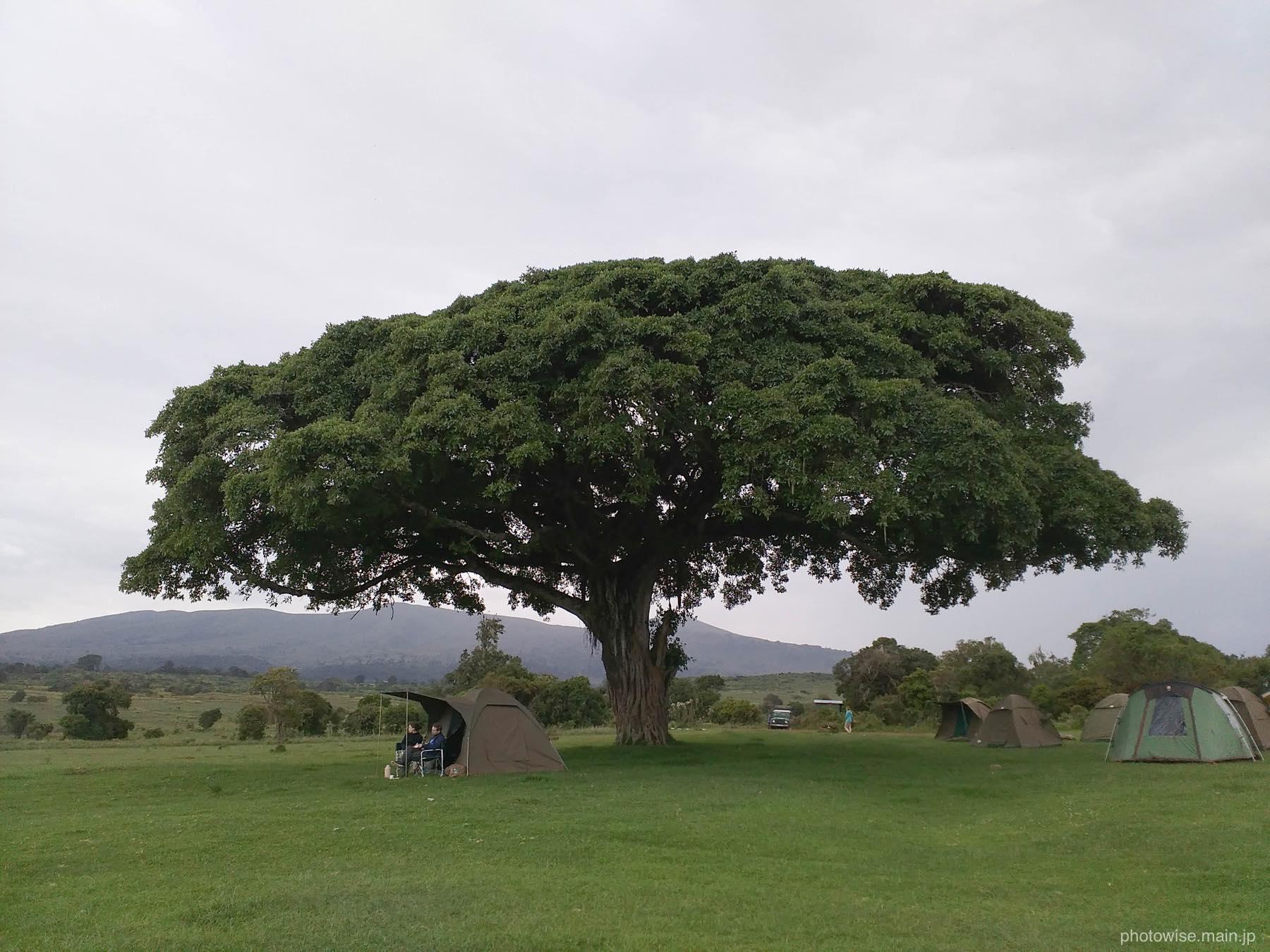 ンゴロンゴロのキャンプサイト