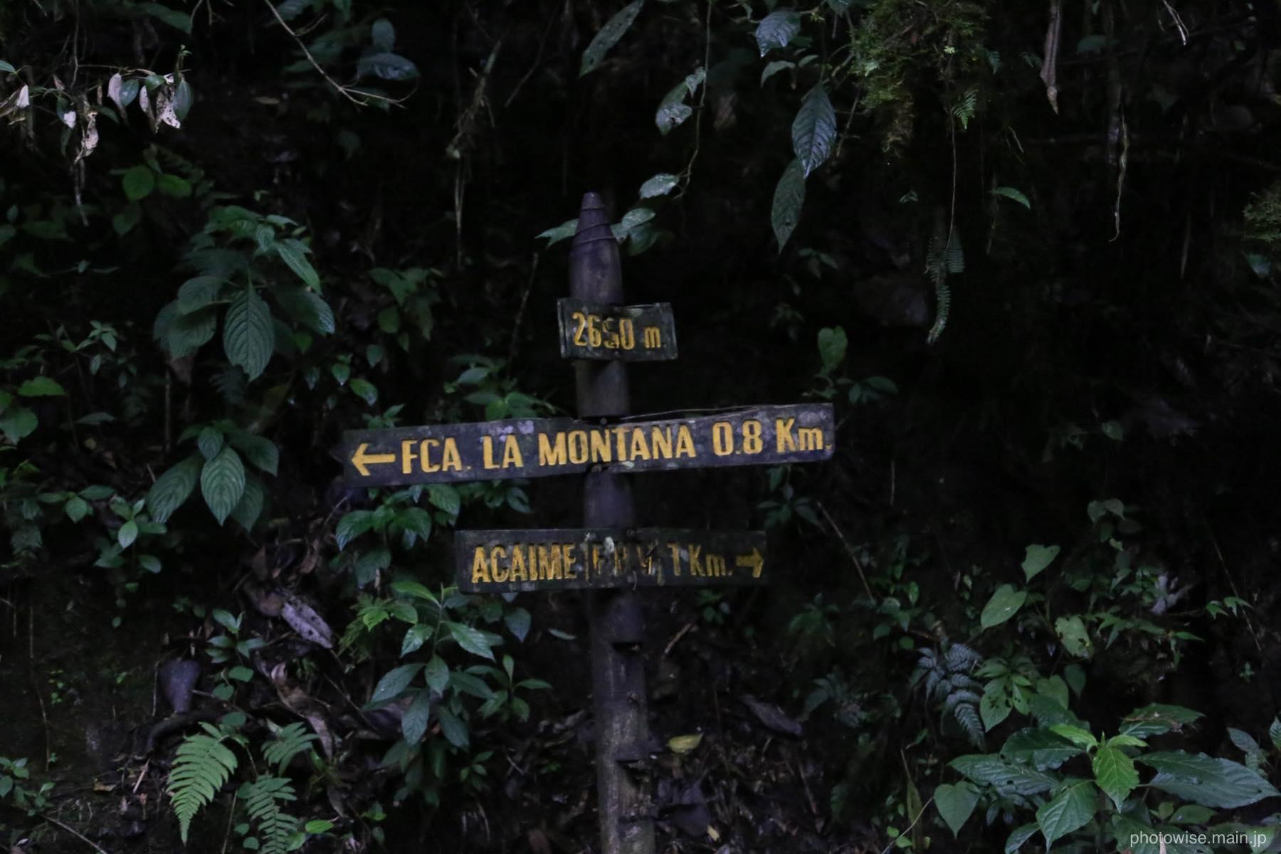 LA MONTAÑAへ