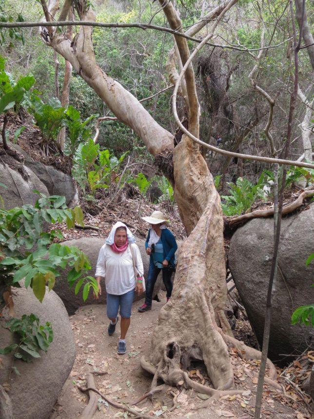 タイロナ国立公園