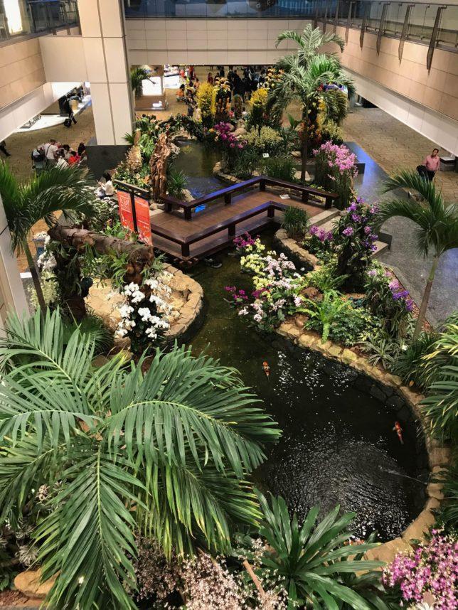 enchanted_garden