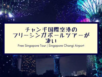 blogチャンギ国際空港のフリーシンガポールツアーが凄い (2)