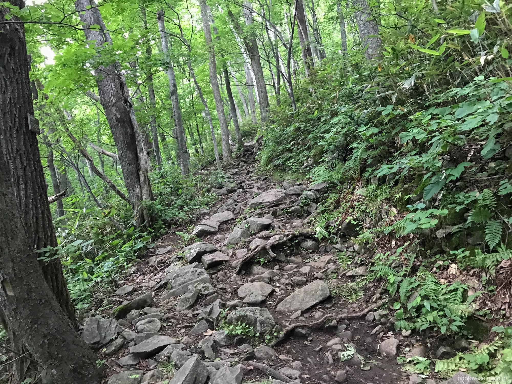 石が多い登山道