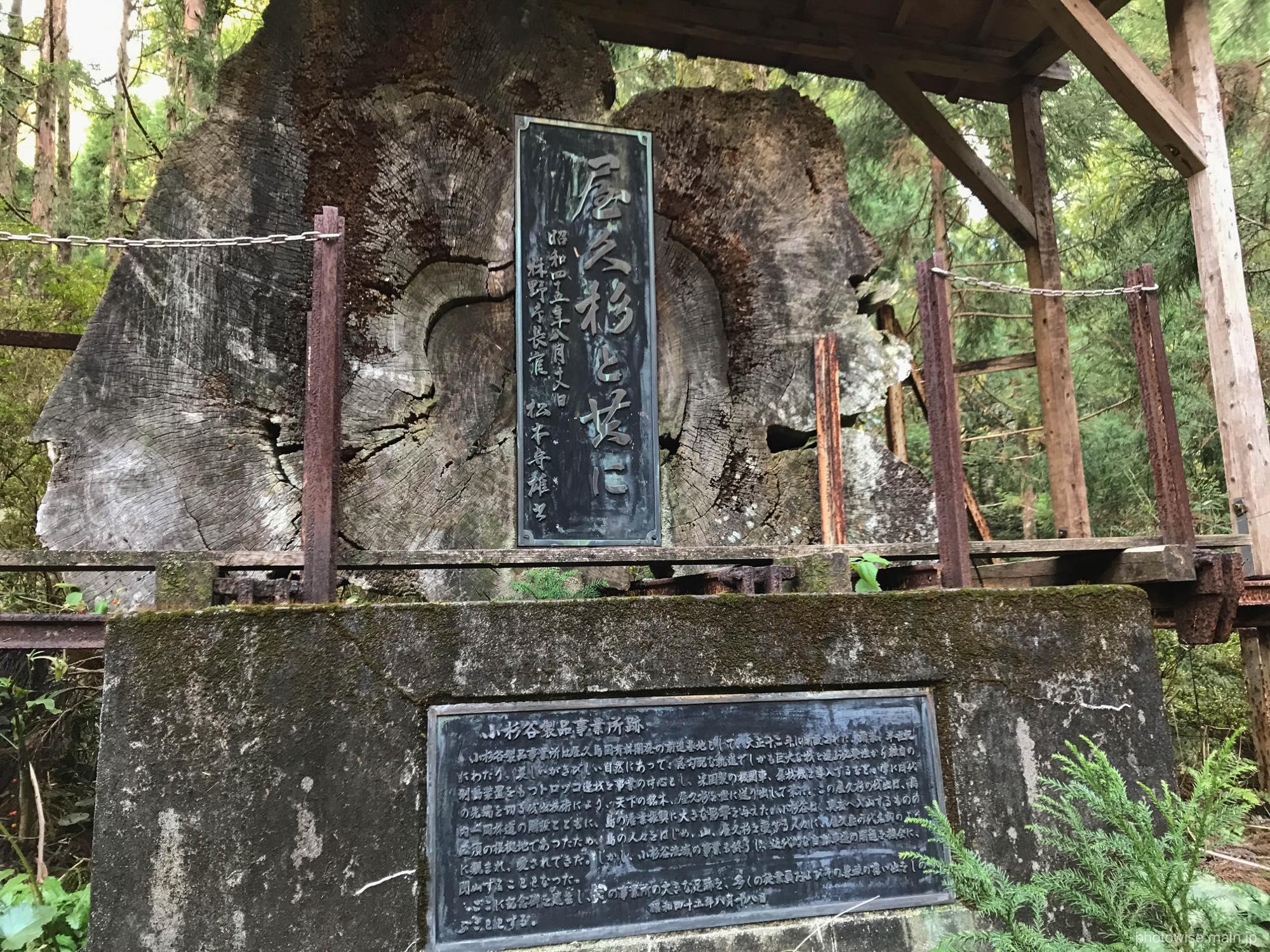 小杉谷集落跡