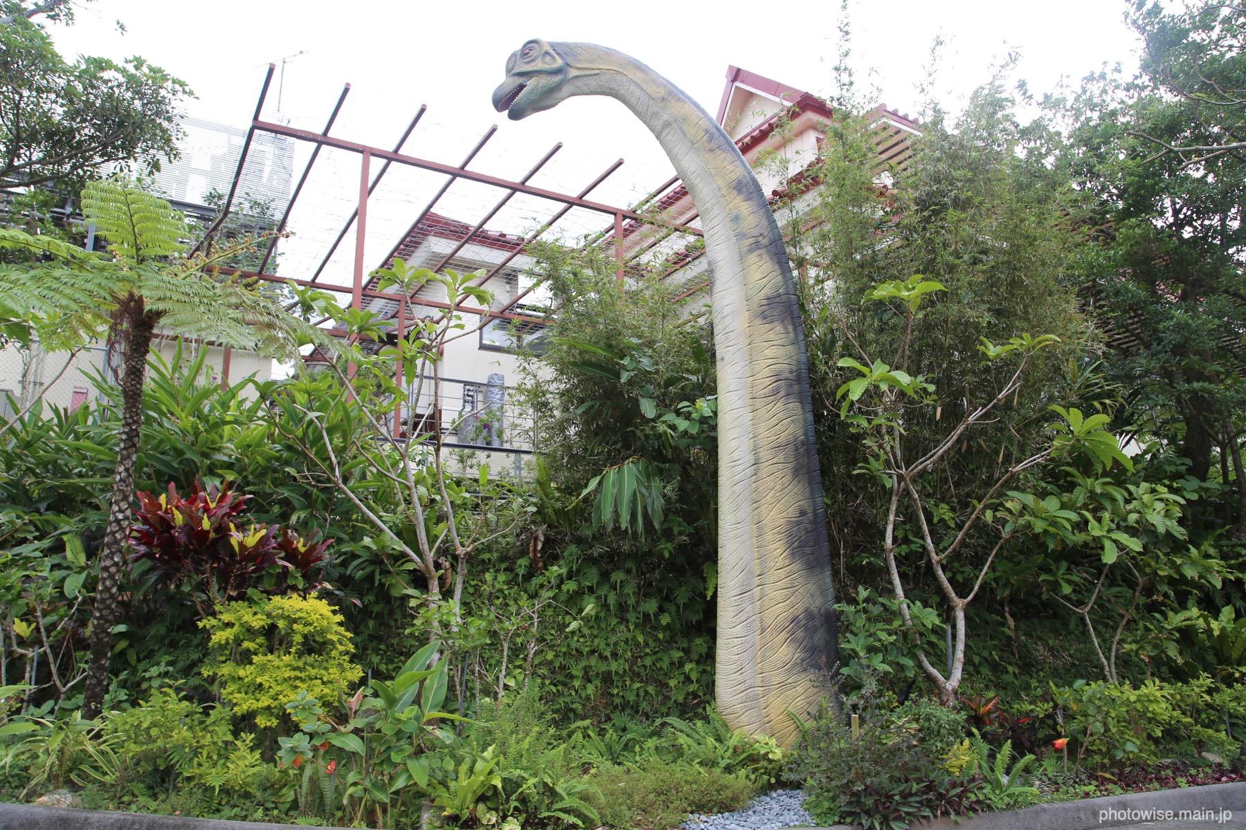 恐竜でてきたw